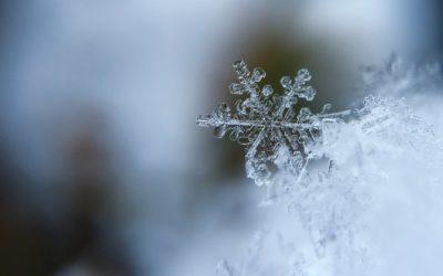 Coche en forma para el invierno